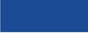 Nitis logo